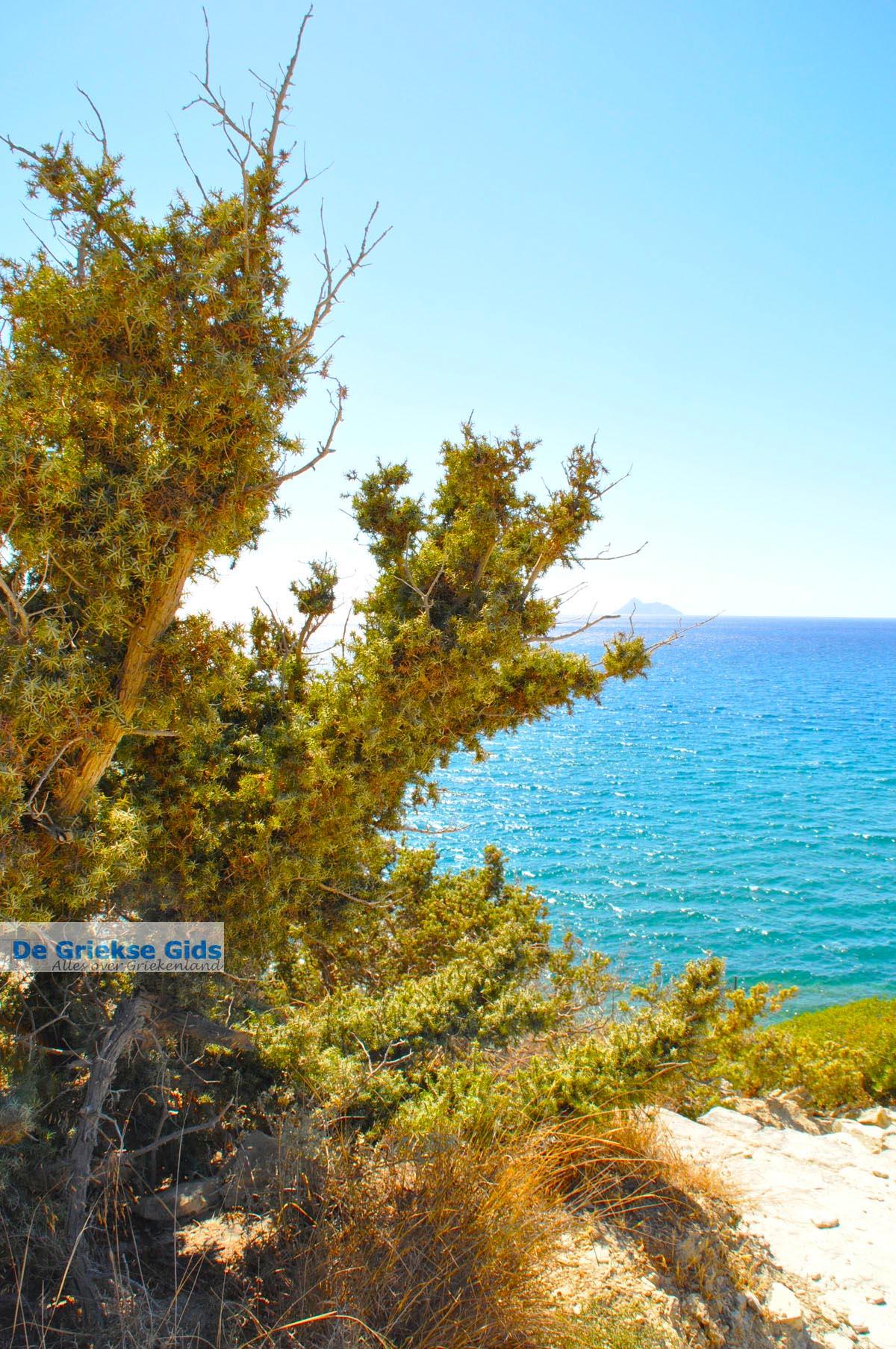 foto Komos | Zuid Kreta | De Griekse Gids foto 7
