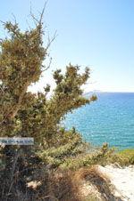 Komos | Zuid Kreta | De Griekse Gids foto 7 - Foto van De Griekse Gids