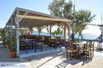 Kalamaki Kreta | Zuid Kreta | De Griekse Gids foto 13 - Foto van De Griekse Gids