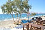 Kalamaki Kreta | Zuid Kreta | De Griekse Gids foto 14 - Foto van De Griekse Gids