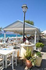 GriechenlandWeb.de Kalamaki Kreta | Südkreta | GriechenlandWeb.de foto 26 - Foto GriechenlandWeb.de