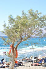 Kalamaki Kreta | Zuid Kreta | De Griekse Gids foto 28 - Foto van De Griekse Gids