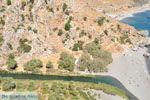Preveli | Zuid Kreta | De Griekse Gids foto 6 - Foto van De Griekse Gids