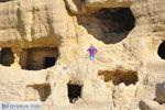 Matala | Zuid Kreta | De Griekse Gids foto 42 - Foto van De Griekse Gids