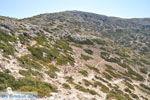 Van Matala naar Red Beach | Zuid Kreta | De Griekse Gids foto 19 - Foto van De Griekse Gids