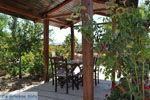 Villa Kapariana bij Mires | Zuid Kreta | De Griekse Gids foto 3 - Foto van De Griekse Gids