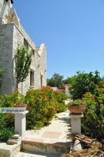 Villa Kapariana Mires | Südkreta | GriechenlandWeb.de foto 9 - Foto GriechenlandWeb.de