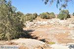Komos | Zuid Kreta | De Griekse Gids foto 39 - Foto van De Griekse Gids