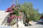 Sivas | Zuid Kreta | De Griekse Gids foto 2 - Foto van De Griekse Gids
