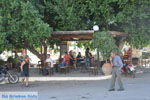 Sivas | Zuid Kreta | De Griekse Gids foto 14 - Foto van De Griekse Gids