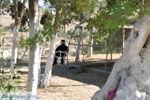 Klooster Odigitria | Zuid Kreta | De Griekse Gids foto 1 - Foto van De Griekse Gids