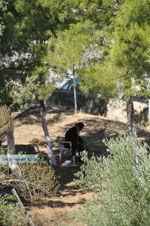 Klooster Odigitria | Zuid Kreta | De Griekse Gids foto 25 - Foto van De Griekse Gids