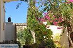 Klooster Odigitria | Zuid Kreta | De Griekse Gids foto 49 - Foto van De Griekse Gids