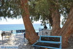 Lendas (Lentas) | Zuid Kreta | De Griekse Gids foto 2 - Foto van De Griekse Gids