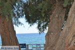 Lendas (Lentas) | Zuid Kreta | De Griekse Gids foto 41 - Foto van De Griekse Gids