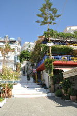 GriechenlandWeb.de Agia Galini | Südkreta | GriechenlandWeb.de foto 009 - Foto GriechenlandWeb.de