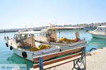 Agia Galini | Zuid Kreta | De Griekse Gids foto 067 - Foto van De Griekse Gids