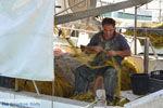 Agia Galini | Zuid Kreta | De Griekse Gids foto 068 - Foto van De Griekse Gids