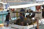 Agia Galini | Zuid Kreta | De Griekse Gids foto 069 - Foto van De Griekse Gids