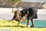 Panagia Kaliviani bij Mires| Zuid Kreta | De Griekse Gids foto 13 - Foto van De Griekse Gids