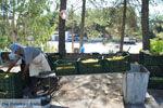 Panagia Kaliviani bij Mires| Zuid Kreta | De Griekse Gids foto 22 - Foto van De Griekse Gids