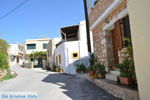 Vori | Zuid Kreta | De Griekse Gids foto 10 - Foto van De Griekse Gids