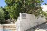 Vori | Zuid Kreta | De Griekse Gids foto 49 - Foto van De Griekse Gids