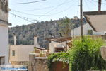 Vori | Zuid Kreta | De Griekse Gids foto 68 - Foto van De Griekse Gids