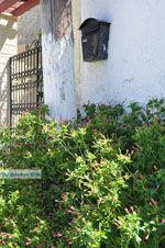 Kamilari | Zuid Kreta | De Griekse Gids foto 10 - Foto van De Griekse Gids