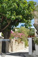 Kamilari | Zuid Kreta | De Griekse Gids foto 12 - Foto van De Griekse Gids