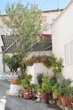Kamilari | Zuid Kreta | De Griekse Gids foto 13 - Foto van De Griekse Gids