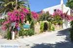 Kamilari | Zuid Kreta | De Griekse Gids foto 18 - Foto van De Griekse Gids