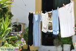 Kamilari | Zuid Kreta | De Griekse Gids foto 20 - Foto van De Griekse Gids