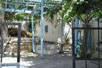 Kamilari | Zuid Kreta | De Griekse Gids foto 25 - Foto van De Griekse Gids