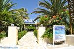 GriechenlandWeb.de Kalamaki Kreta | Südkreta | GriechenlandWeb.de foto 43 - Foto GriechenlandWeb.de