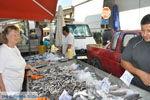 GriechenlandWeb.de Timbaki | Südkreta | GriechenlandWeb.de foto 13 - Foto GriechenlandWeb.de