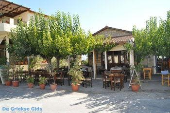 Sivas | Südkreta | GriechenlandWeb.de foto 1 - Foto von GriechenlandWeb.de