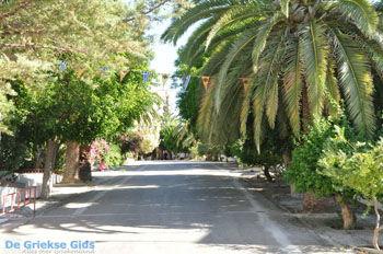 Panagia Kaliviani bij Mires| Zuid Kreta | De Griekse Gids foto 24 - Foto van De Griekse Gids