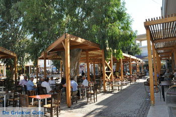 Timbaki | Südkreta | GriechenlandWeb.de foto 5 - Foto von GriechenlandWeb.de
