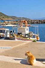 Aghia Pelagia | Kythira | De Griekse Gids foto 8 - Foto van De Griekse Gids