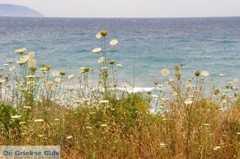 Aghia Pelagia Kythira | Strand Lagada foto 1