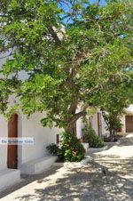 Agia Moni bij Diakofti | Kythira | De Griekse Gids 4 - Foto van De Griekse Gids