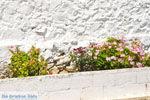 Agia Moni bij Diakofti | Kythira | De Griekse Gids 10 - Foto van De Griekse Gids
