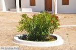 Agia Moni bij Diakofti | Kythira | De Griekse Gids 11 - Foto van De Griekse Gids
