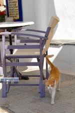 Avlemonas Kythira | Griekenland | De Griekse Gids 6 - Foto van De Griekse Gids