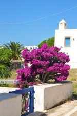 Avlemonas Kythira | Griekenland | De Griekse Gids 28 - Foto van De Griekse Gids