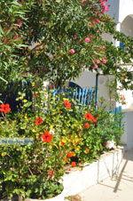 Avlemonas Kythira | Griekenland | De Griekse Gids 30 - Foto van De Griekse Gids