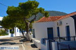 Avlemonas Kythira | Griekenland | De Griekse Gids 76 - Foto van De Griekse Gids