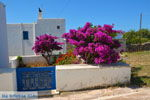 Avlemonas Kythira | Griekenland | De Griekse Gids 77 - Foto van De Griekse Gids