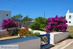Avlemonas Kythira | Griekenland | De Griekse Gids 78 - Foto van De Griekse Gids